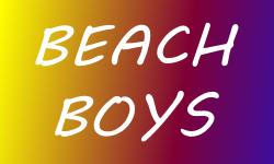 Beach Boys Concert 2014