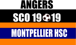 Place Match Ligue 1 ASCO - MHSC