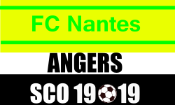 Place de Foot Ligue 1 Nantes - Angers