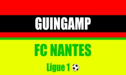 Billet Guingamp Nantes