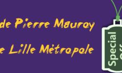 Stade-Pierre-Mauroy-Villeneuve-d-Ascq-Lille