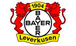 Billet Bayer 04 Leverkusen - VfB Stuttgart place match foot Championnat d'Allemagne de football - Bundesliga