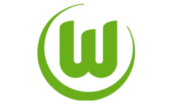 Billet VfL Wolfsbourg - Hambourg SV place match foot Championnat d'Allemagne de football - Bundesliga