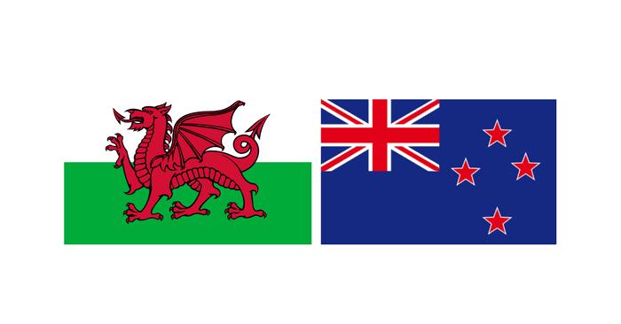 Billets Pays de Galles - Nouvelle-Zélande Tournée Novembre