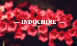 Places de Concert Indochine 2018