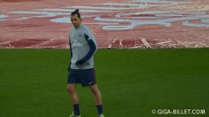 Zlatan Ibrahimovic - PSG 2013-2014
